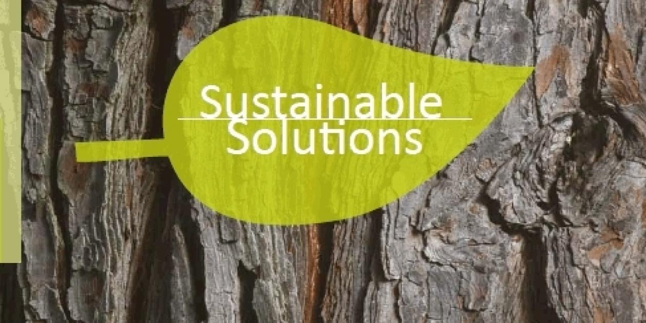 POLYREY - Sustainable Solutions
