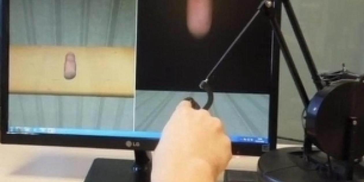 Entrenamientos biomédicos a partir de simulaciones interactivas