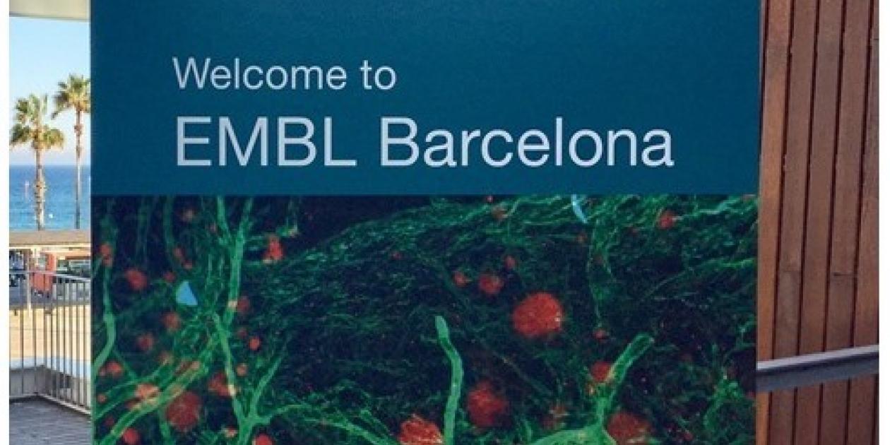 El Laboratorio Europeo de Biología Molecular abre una sede en Barcelona