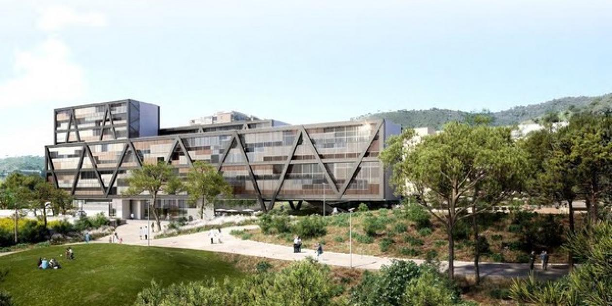 Propuesta Finalista de Reordenación del Campus Vall d'Hebrón. Carme Pinós