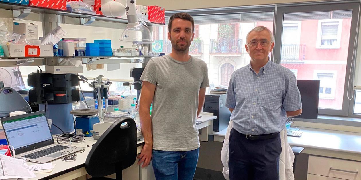 Clínic-IDIBAPS crea una herramienta bioinformática para diagnosticar diferentes tipos de leucemias y linfomas