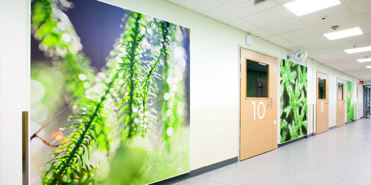 Acondicionamiento acústico y eficiencia de espacios sanitarios
