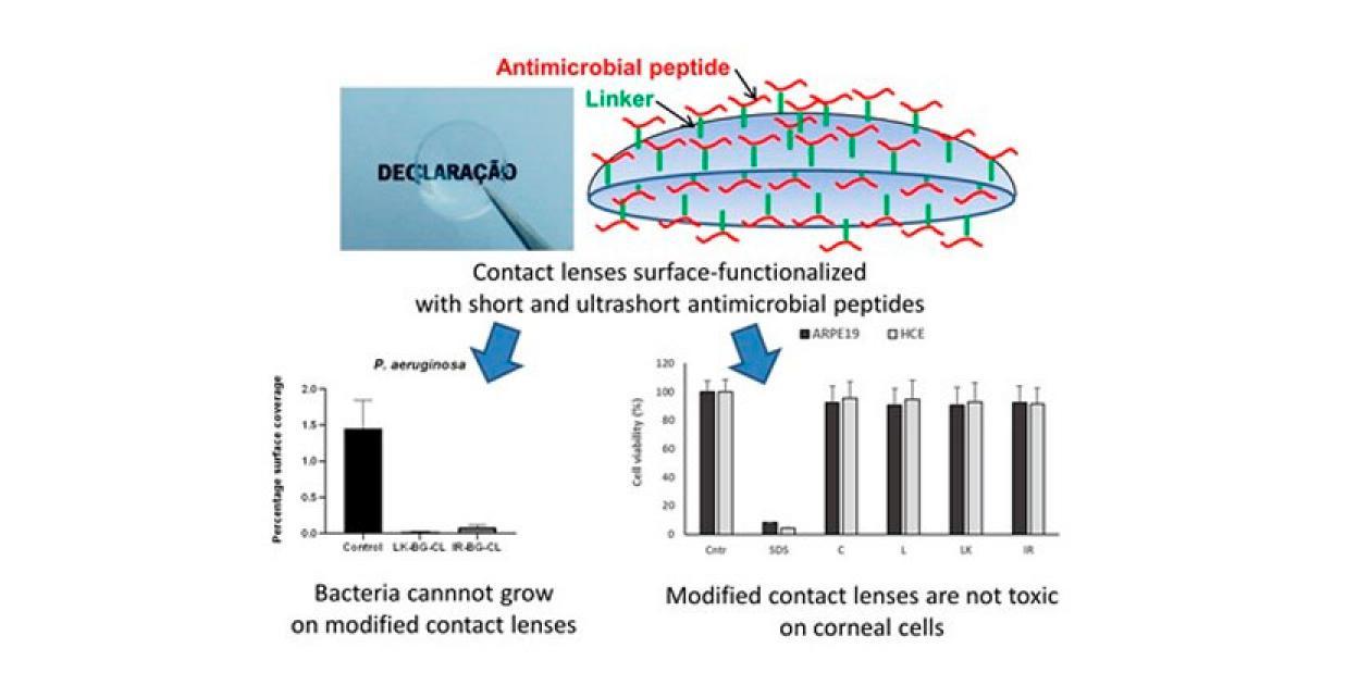 Investigadores logran desarrollar lentes de contacto que reducen el riesgo de infección bacteriana