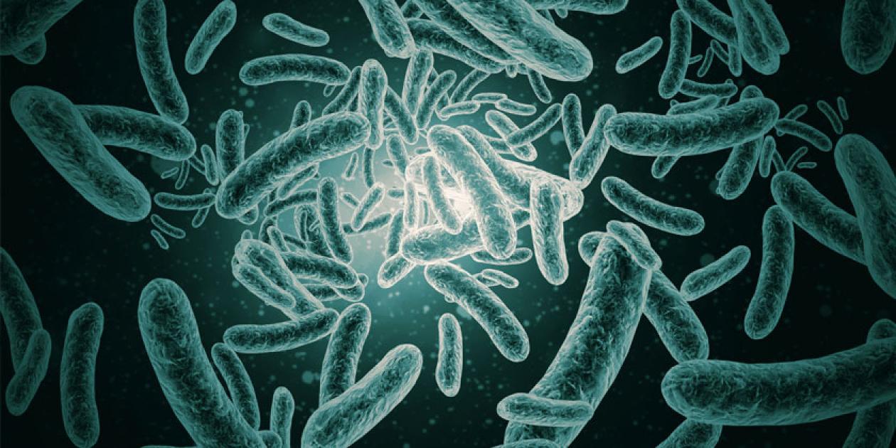 ANECPLA insta al necesario mantenimiento de todas las instalaciones de riesgo de Legionella