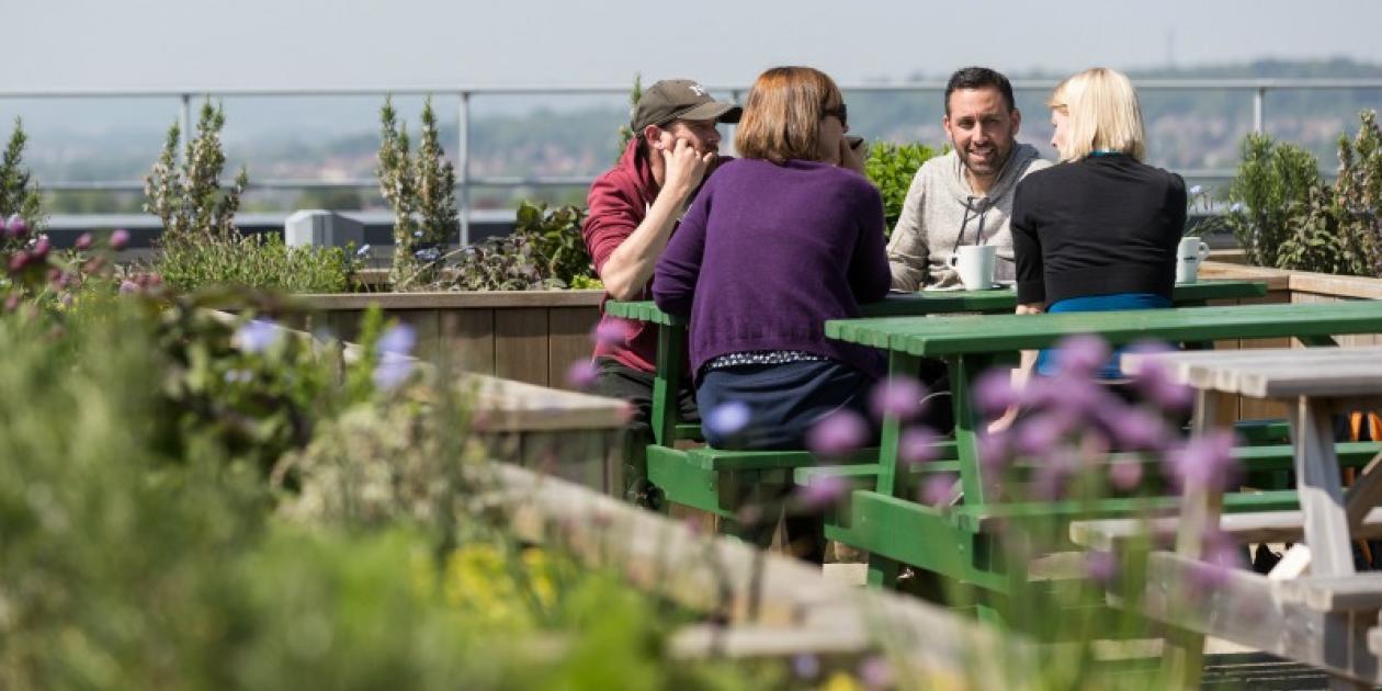 North Bristol NHS Trust incorpora una cubierta verde en el Hospital Southmead