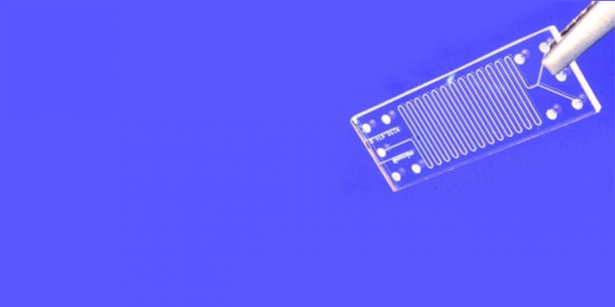 Dispositivos Lab-on-a-chip: un cambio de escala en el diagnóstico clínico