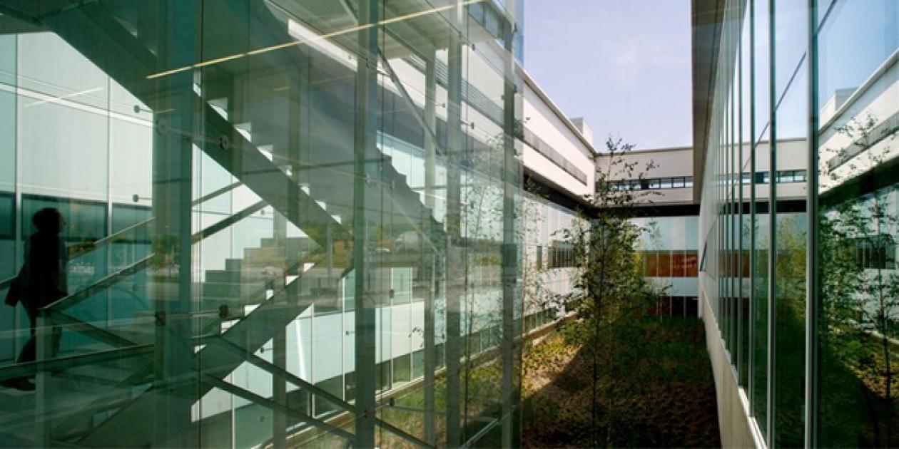 El hospital evolutivo: dos ejemplos del hospital horizontal