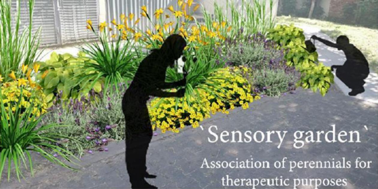 Mejora de la conducta y la atención de salud mental mediante terapia de horitcultura